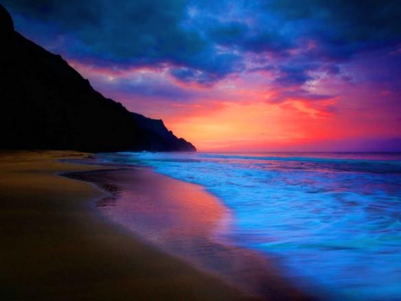 Shore5